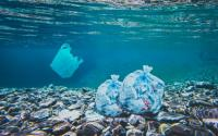 What can you do to limit Ocean plastics