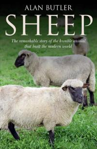 Sheep by Alan Butler
