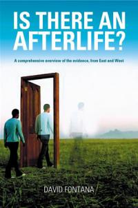 Is There an Afterlife? by David Fontana