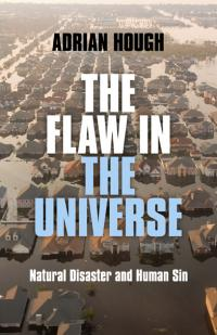 Flaw in the Universe, The by Adrian Hough