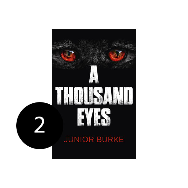 Image of A Thousand Eyes Book